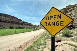 Weite Wege: Auf den Routen durch die ländlichen Gegenden gehören Fahrten durchs offene Gelände dazu.
